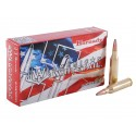 HORNADY American Whitetail 243 WIN INTERLOCK 100GR