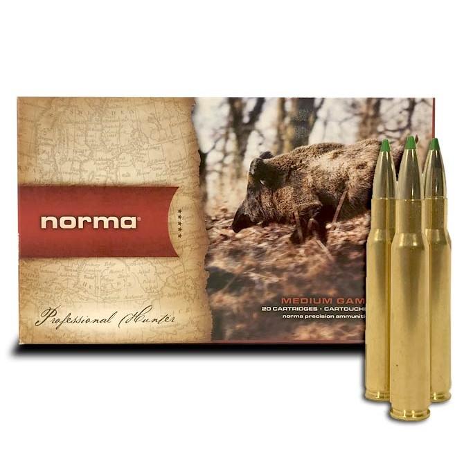 Balle Norma Eco strike calibre .30-06 Sprg