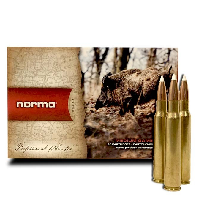 Balle Norma Nosler Accubonb 7 x 64 - 140 Grs
