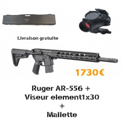 Pack RUGER AR-556 + Viseur element + mallette