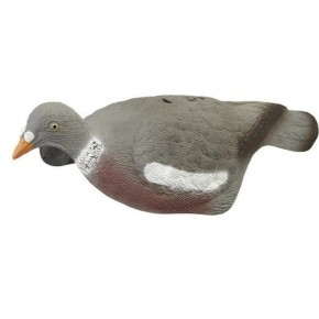 APPEAU PIGEON LUXCOQUILLE